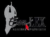 Exelex Lawyers